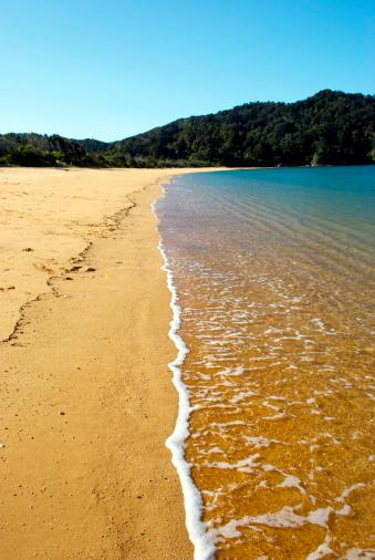 New Zealand Culture「Totaranui Beach, Abel Tasman National Park, New Zealand」:スマホ壁紙(5)