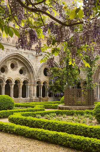 Abbey - Monastery「Fontfroide Abbey, cloister with wisteria」:スマホ壁紙(17)