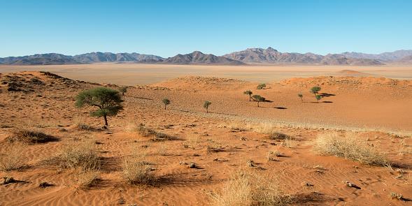 Namibia「Namib Rand Naturreservat, Namibia」:スマホ壁紙(8)
