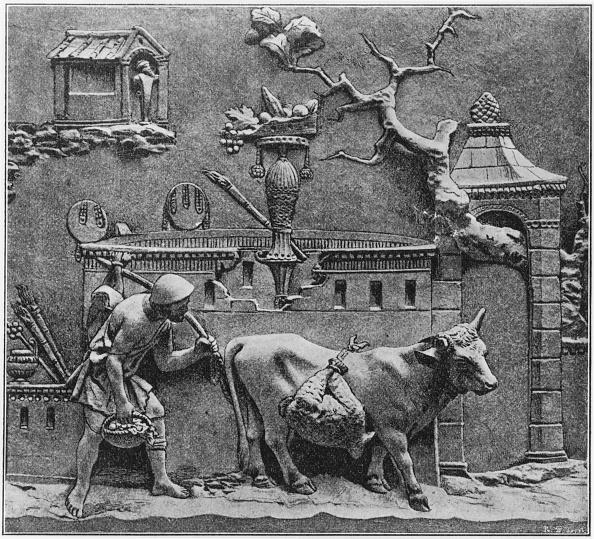 Ancient Civilization「Ancient Roman Farmer」:写真・画像(7)[壁紙.com]