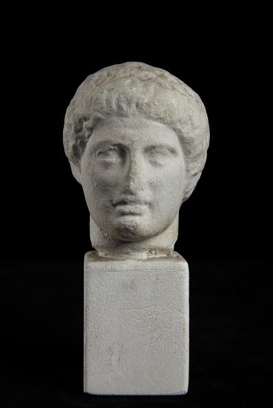 Head「Head Of Dioskouros(?) From Nemesis Statue Base By Agorakritos. From Rhamnous」:写真・画像(14)[壁紙.com]
