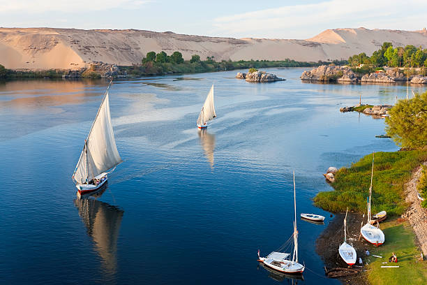 Felucca sailboats on River Nile, Aswan, Egypt:スマホ壁紙(壁紙.com)