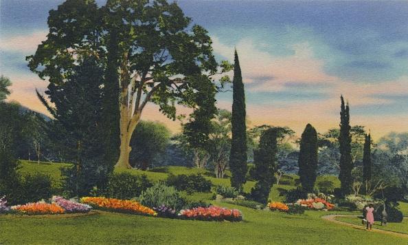 Ornamental Garden「Rock Garden」:写真・画像(1)[壁紙.com]