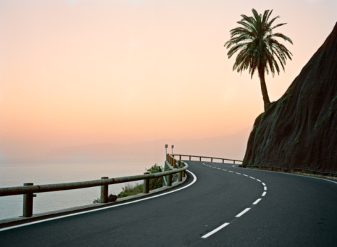 Fan Palm Tree「Canary Islands, La Gomera, silhouette of palm tree on coastal highway at sunset」:スマホ壁紙(2)