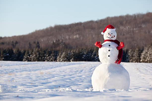 Boxing day snowman:スマホ壁紙(壁紙.com)
