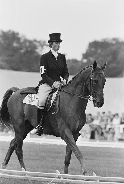 Horse「Princess Anne On Doublet」:写真・画像(11)[壁紙.com]