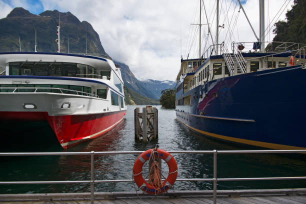 Tour boats docked at Milford Sound Wharf.:スマホ壁紙(壁紙.com)