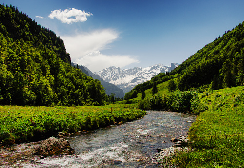 生い茂る「River through mountain valley, Innertkirchen, Bern, Switzerland」:スマホ壁紙(15)