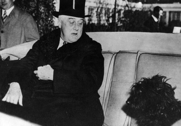 Franklin Roosevelt「President And Dog」:写真・画像(4)[壁紙.com]