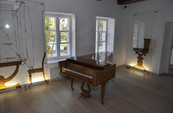 Musical instrument「Chopin's Birthplace」:写真・画像(4)[壁紙.com]