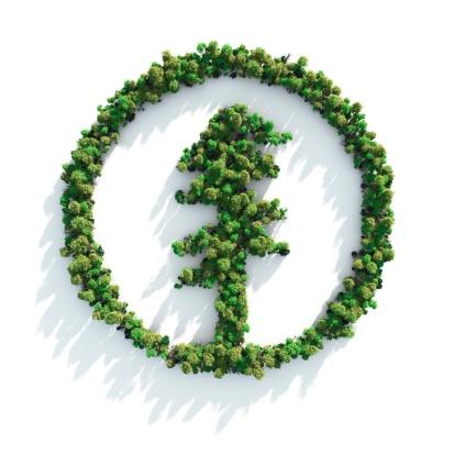 Boreal Forest「Green Tree Icon」:スマホ壁紙(3)