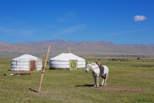 Orkhon Valley「Horse and Gers, Orkhon Valley」:スマホ壁紙(8)
