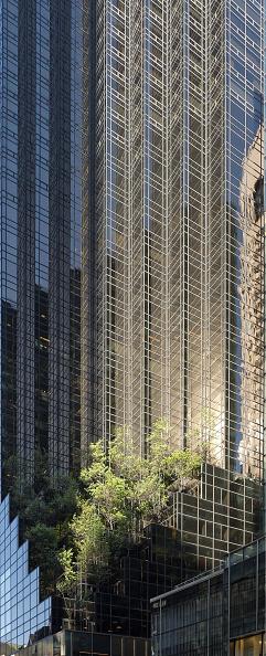 Skyscraper「Hanging Gardens Of Trump Towers」:写真・画像(19)[壁紙.com]