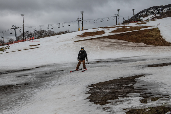 Grass「Japan's Lack Of Snow Hits Ski Season」:写真・画像(7)[壁紙.com]