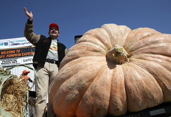 Pumpkin「Half Moon Bay's Annual Pumpkin Weigh Off Determines World's Biggest Gourd」:写真・画像(11)[壁紙.com]