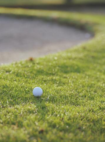 Sand Trap「Golf ball on green next to sand trap」:スマホ壁紙(9)