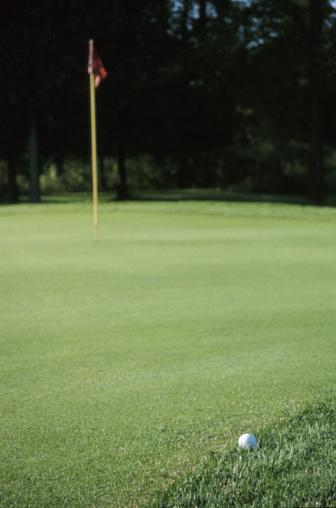 Golf Links「Golf ball on edge of green」:スマホ壁紙(16)