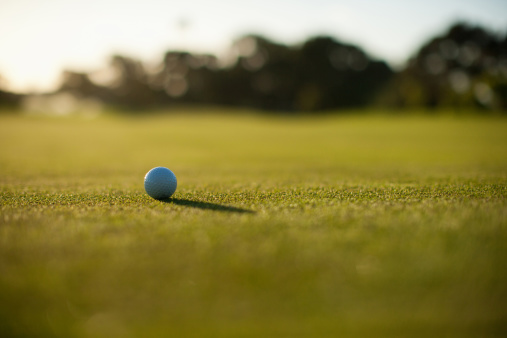 Back Lit「Golf ball on grass」:スマホ壁紙(18)