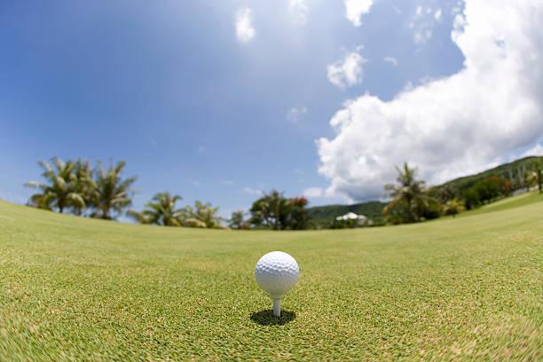 Golf ball on grass, fish-eye lens, Saipan, USA :スマホ壁紙(壁紙.com)