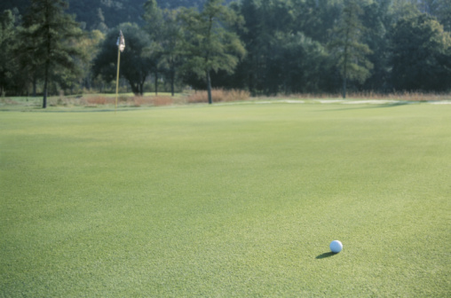 Golf Links「Golf ball on course by flagstick」:スマホ壁紙(5)