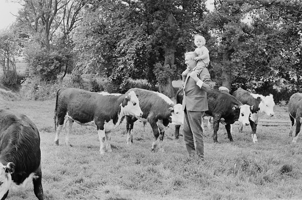 Farm「Callaghan In The Country」:写真・画像(5)[壁紙.com]