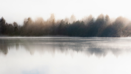 Adirondack Forest Preserve「Morning mist on Mirror Lake」:スマホ壁紙(8)