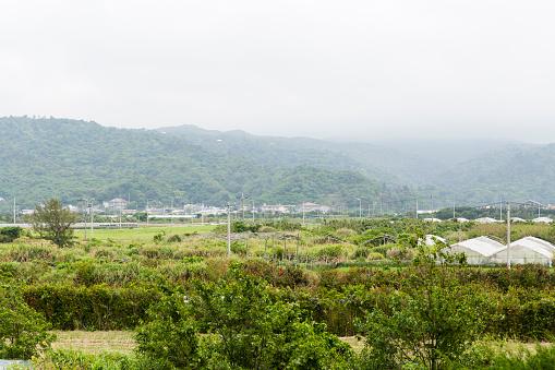 里山「Morning Mist on Farmland below the Hills of Yanbaru Forest in Kunigami, Okuma, Okinawa Island」:スマホ壁紙(18)
