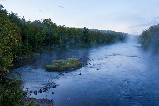 Growth「Morning mist rising from East Branch of Penobscot River, Matagamon Wilderness Camps, International Appalachian Trail, Maine, USA」:スマホ壁紙(17)