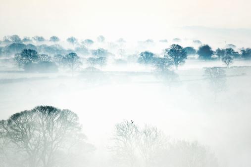 晴れている「Morning mist across a rural valley in Winter」:スマホ壁紙(11)