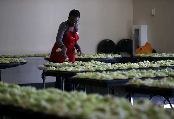 Salad「Bay Area Charities Feed The Needy Ahead Of Thanksgiving」:写真・画像(2)[壁紙.com]