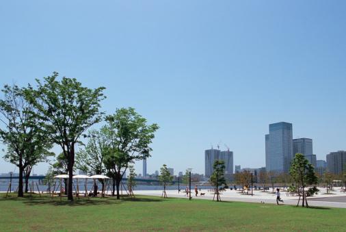 Tokyo - Japan「Toyosu Park, Tokyo, Japan」:スマホ壁紙(3)