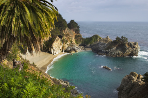 Big Sur「Julia Pfeiffer Burns State Park California」:スマホ壁紙(6)