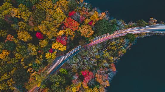 秋「車を渡すと道の秋の Aerea ビュー」:スマホ壁紙(3)
