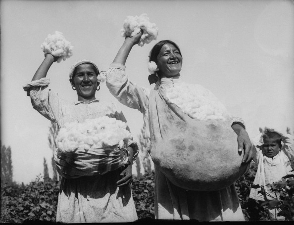 Uzbekistan「Cotton Picking Women」:写真・画像(4)[壁紙.com]