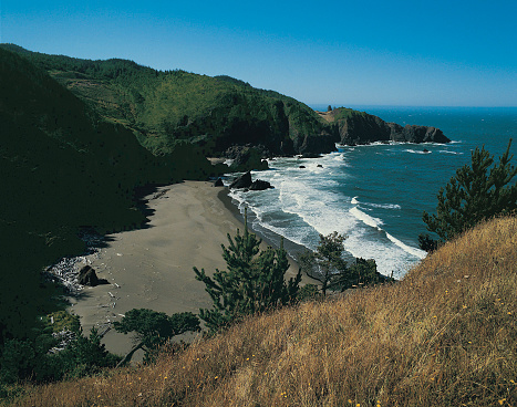 Cape Sebastian「Coastline near Cape Sebastian Park, Oregon, USA」:スマホ壁紙(9)