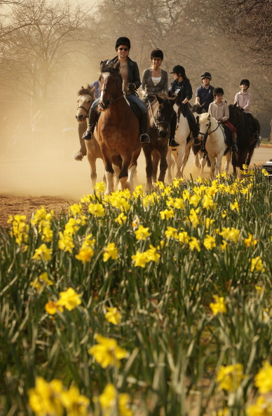 Vertebrate「Londoners Enjoy Spring Sunshine」:写真・画像(19)[壁紙.com]