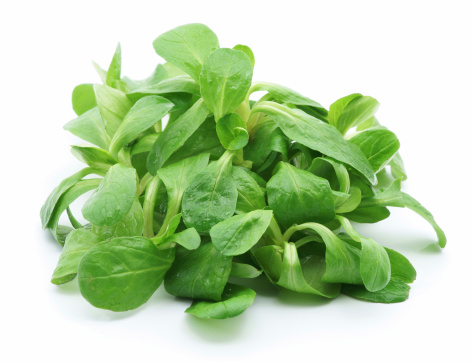 Corn Salad「A pile of green baby lettuce isolated on white」:スマホ壁紙(4)