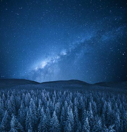 Starry sky「Winter Under The Stars」:スマホ壁紙(14)