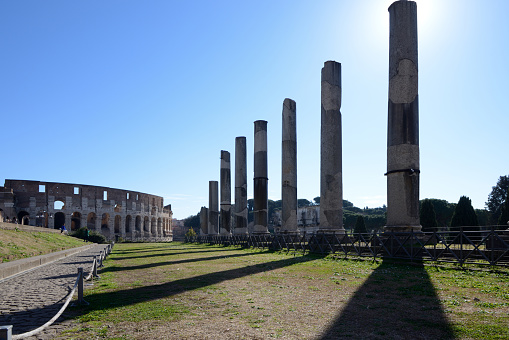 Roman「Colonnades and Colosseum on the Via Sacra Street The Forum Rome」:スマホ壁紙(4)