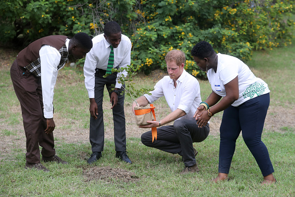 Queens Commonwealth Canopy「Prince Harry Visits The Caribbean - Day 3」:写真・画像(9)[壁紙.com]