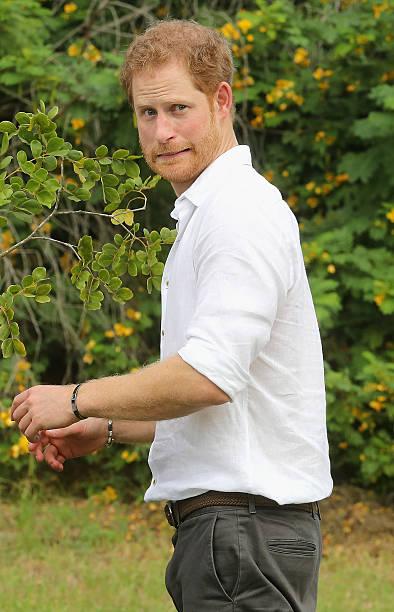 Prince Harry Visits The Caribbean - Day 3:ニュース(壁紙.com)