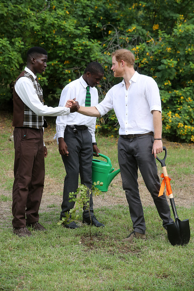 Queens Commonwealth Canopy「Prince Harry Visits The Caribbean - Day 3」:写真・画像(1)[壁紙.com]
