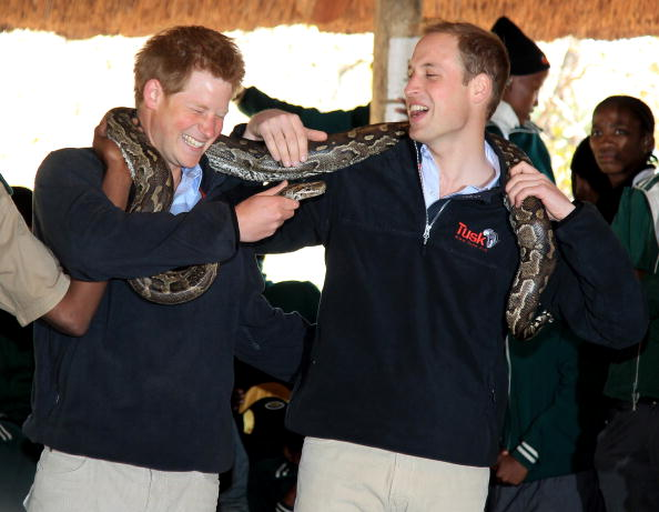 Environmental Conservation「Prince William and Harry Visit Botswana - Day 2」:写真・画像(9)[壁紙.com]