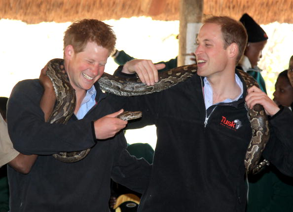 Botswana「Prince William and Harry Visit Botswana - Day 2」:写真・画像(6)[壁紙.com]