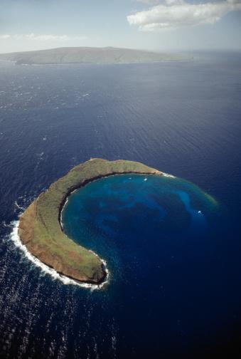 動物「モロキニクレーターハワイ、マウイ島」:スマホ壁紙(10)