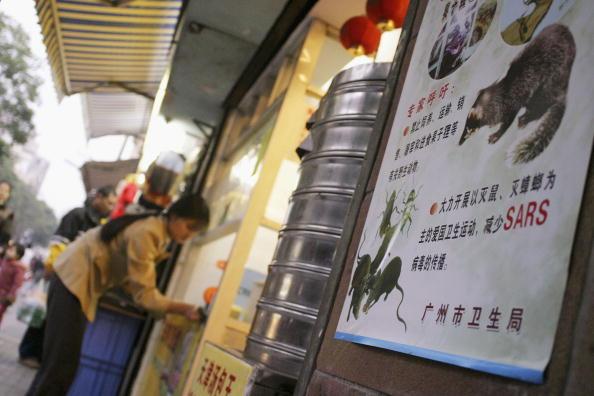 ゴキブリ「South China Coping With Fears Of SARS Outbreak」:写真・画像(16)[壁紙.com]