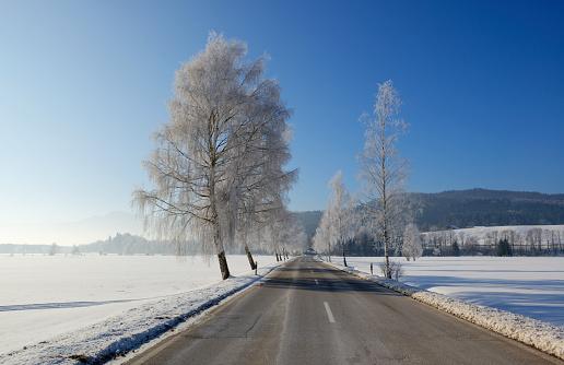 深い雪「Germany, Sindelsdorf, empty county road in winter」:スマホ壁紙(12)