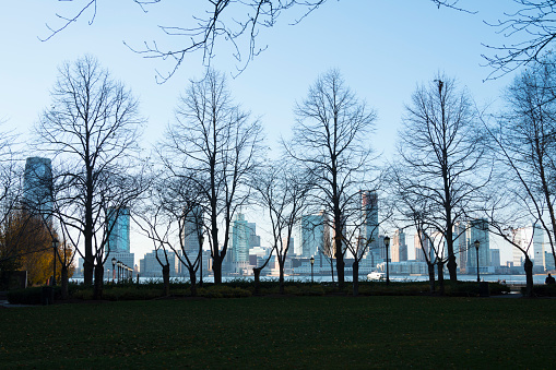 Hudson River Park「New Jersey water front view from Manhattan ward among the desolate wintry tree at Hudson River Park.」:スマホ壁紙(9)