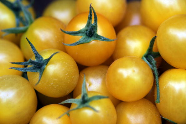 野菜・フルーツ「Hybrid Tomato Seed  More Expensive Than Gold」:写真・画像(18)[壁紙.com]