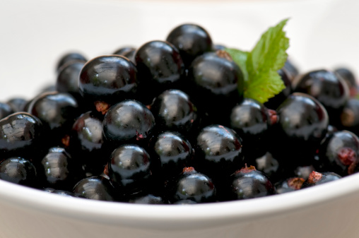 Black currant「Freshly picked blackcurrants in white bowl」:スマホ壁紙(17)